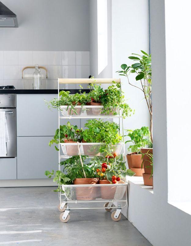 Une desserte Ikea détournée en jardin d'intérieur