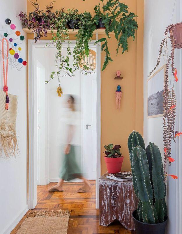 Végétaliser son intérieur sans perdre de place en installant une étagère au dessus d'une porte