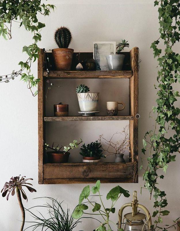 Végétaliser son intérieur sans perdre de place en pariant sur un petit meuble mural