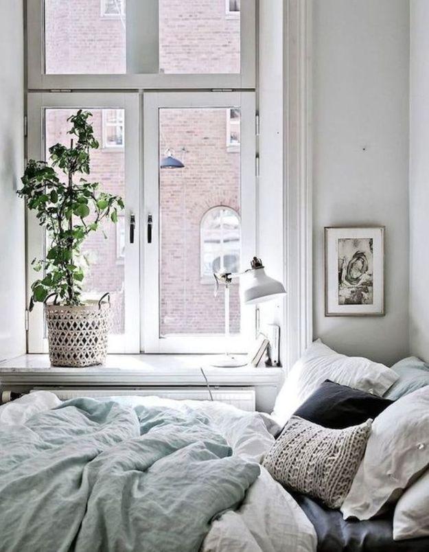 Végétaliser son intérieur sans perdre de place en placant une plante sur le rebord de la fenêtre