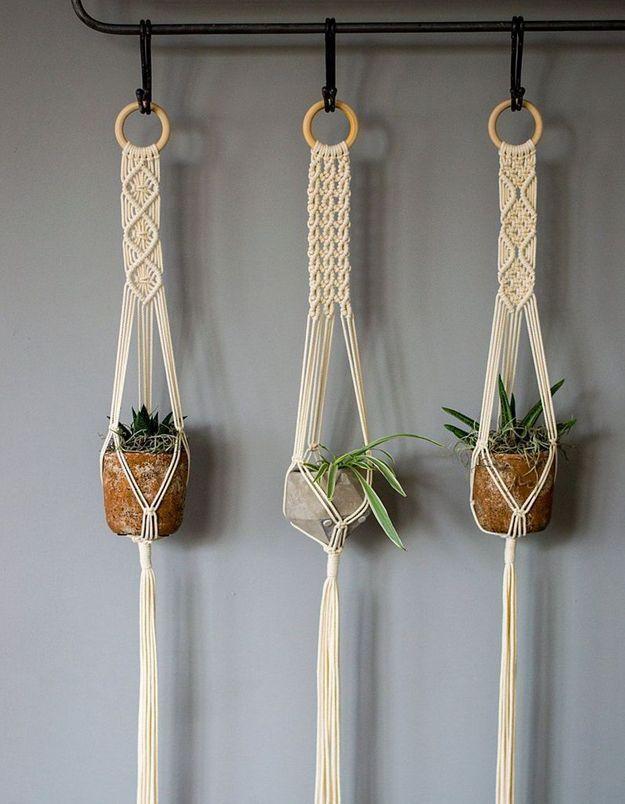 Végétaliser son intérieur sans perdre de place en suspendant des plantes au porte-manteaux