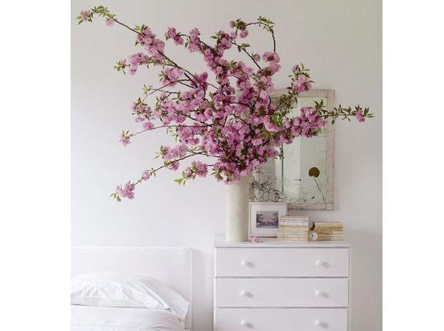 Fleurs De Cerisier Chambre