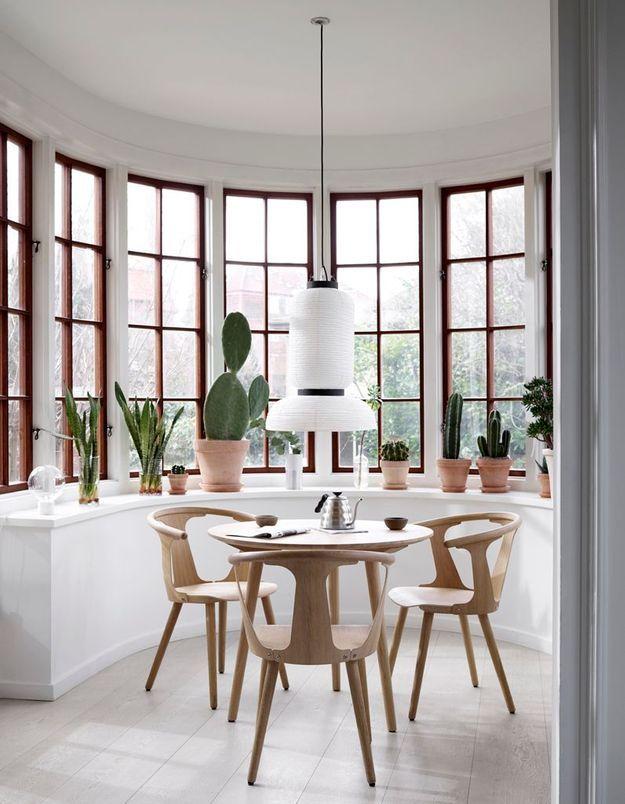 Un rebord de fenêtre pour exposer sa collection de cactus