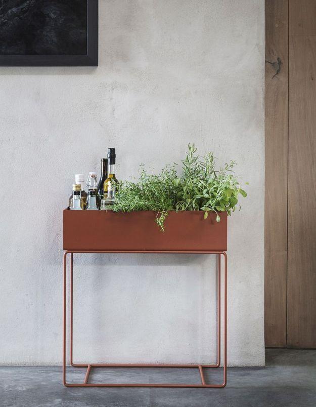 Une décoration végétale via une jardinière indoor