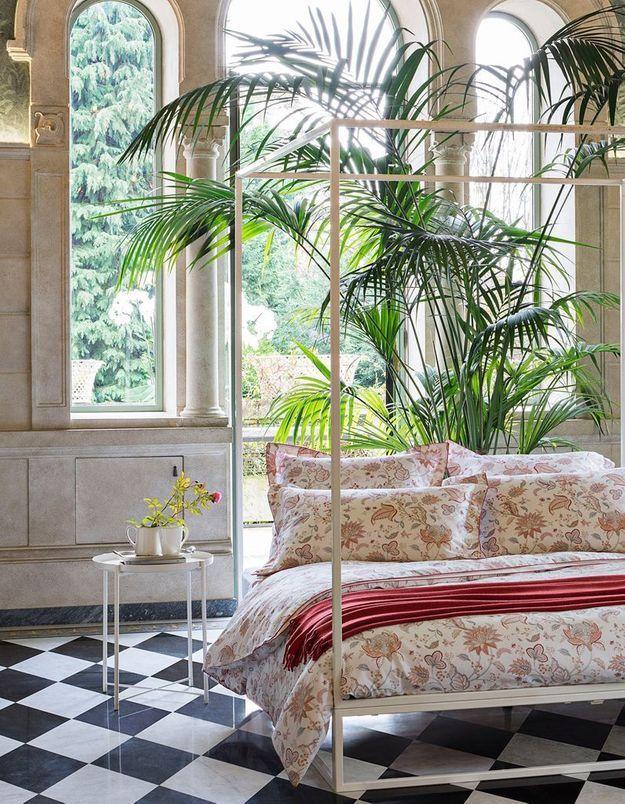 Une décoration végétale via une plante XXL dans la chambre