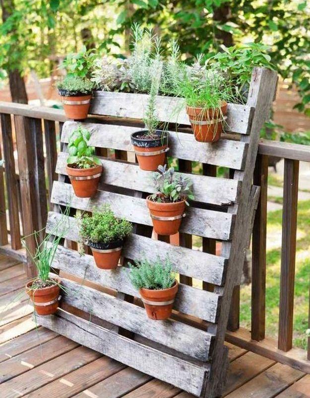 Palette en bois transformée en tableau végétal