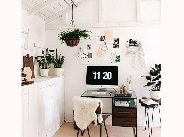 Ajoutez de multiples plantes dans votre bureau