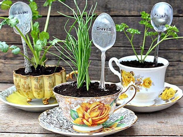 Intimate wedding tasses pots de fleurs