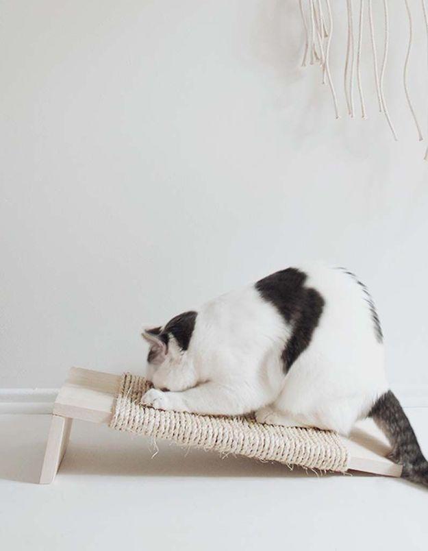 Un DIY pour réaliser un grattoir pour chat