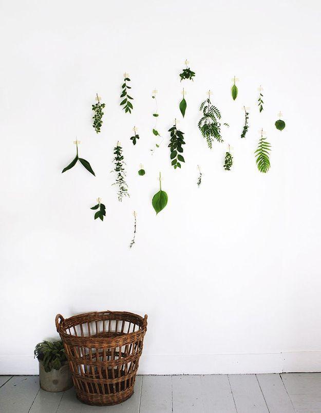 On décore son mur avec des fleurs séchées