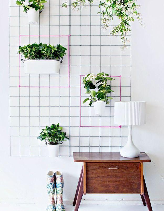 On décore son mur avec une grille végétale