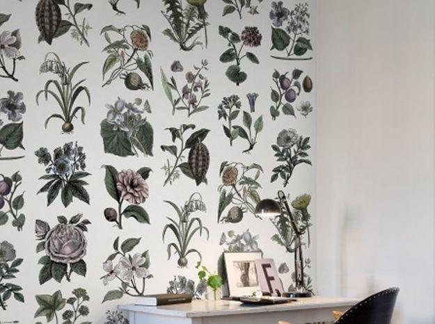 Un papier peint vintage botanique