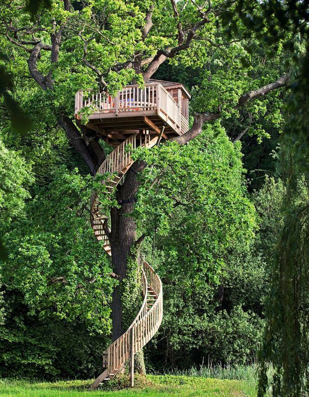 Une cabane d'architecte avec un escalier XXL
