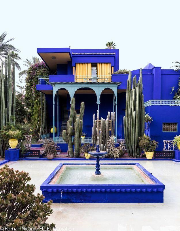 Jardin Majorelle - Fraîcheur bleutée