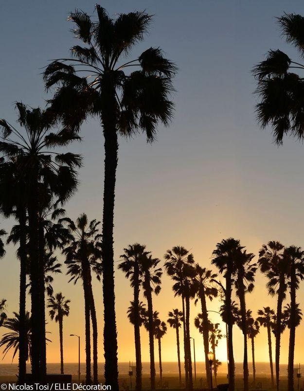 A l'ouest, les célèbres plages de Los Angeles