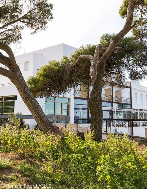 L'hôtel au milieu des pins