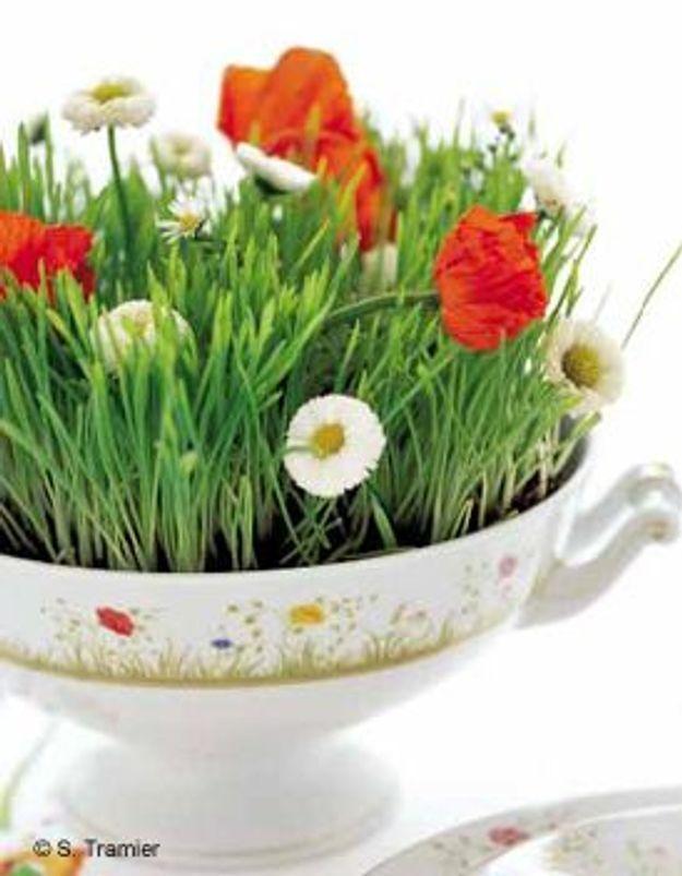 Petits plats en fleurs