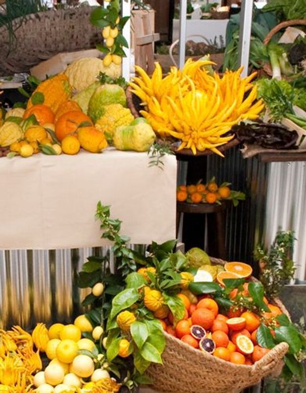 Les snobismes de printemps : les nouveaux légumes de chefs
