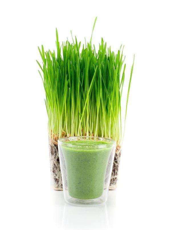 Les jus d'herbe, de blé et d'orge