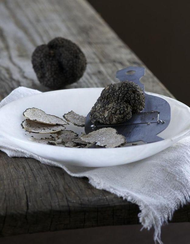 Tout ce que vous avez toujours voulu savoir sur la truffe sans jamais oser le demander