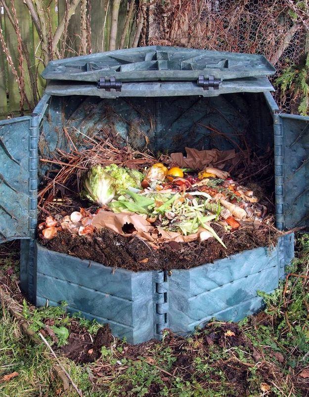 Les bonnes raisons de lutter contre le gaspillage