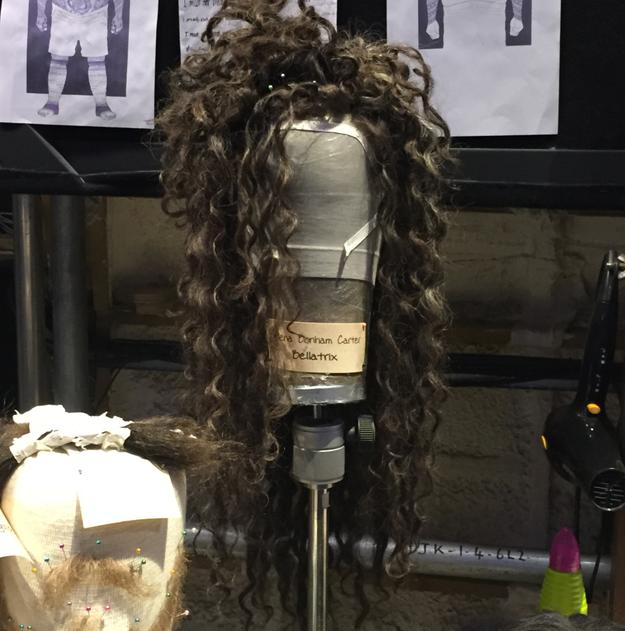 La coiffure de Bellatrix