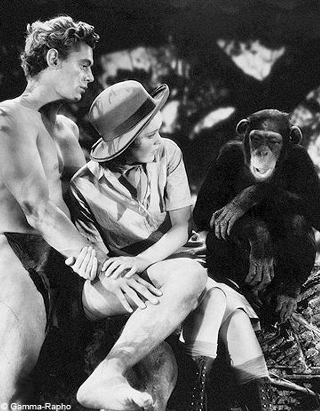 Cheetah, le singe de Tarzan est mort à 80 ans