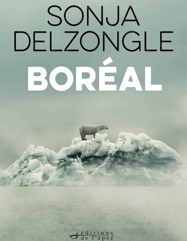 « Boreal » de Sonja Delzongle (Denoël)