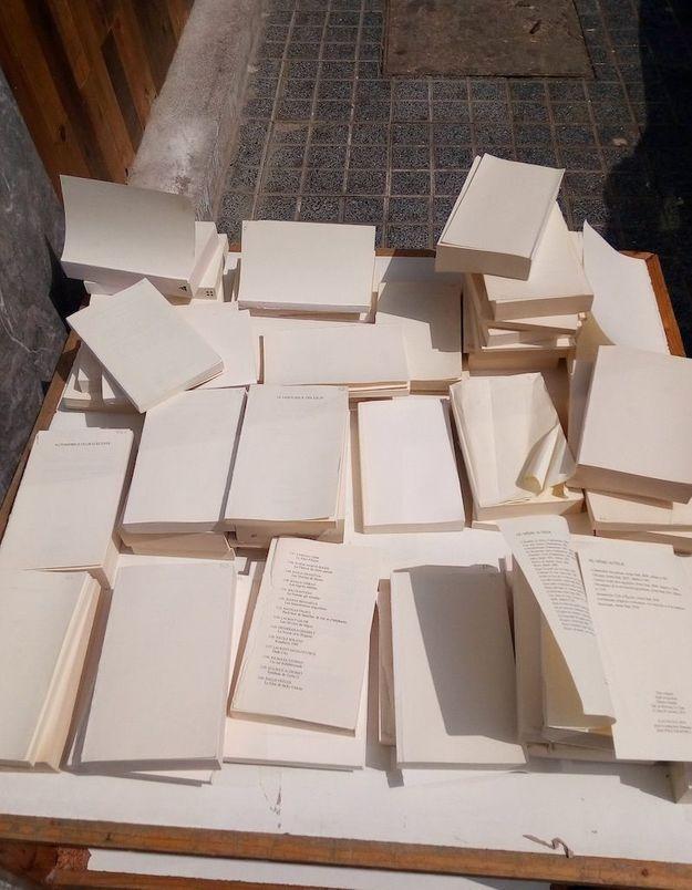 Pour sauver des livres de la destruction, cette librairie distribue gratuitement ses invendus