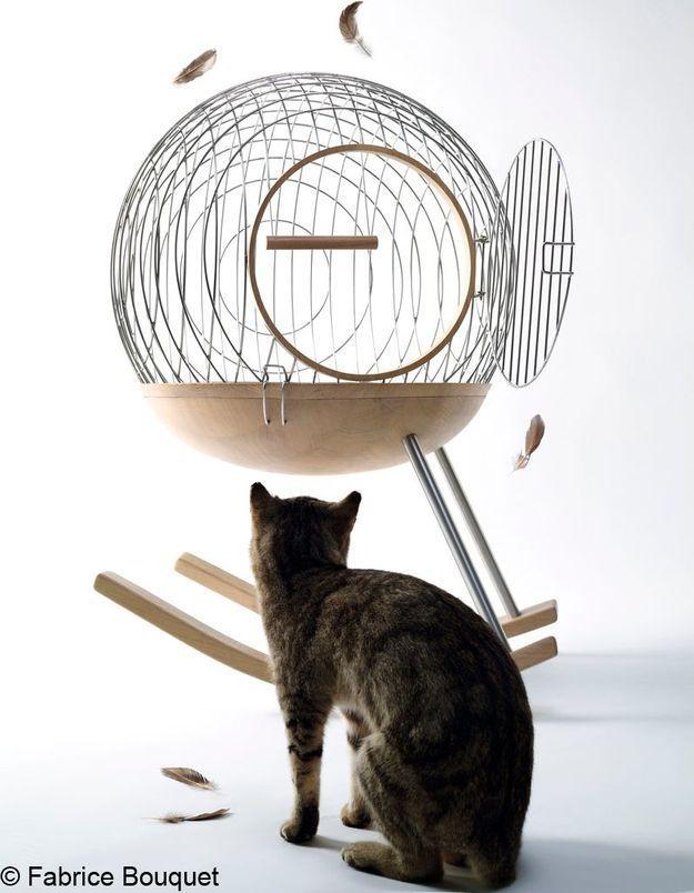 Une cage à bascule créée par Frédéric Stouls et Marc Ange, le duo de Chimère