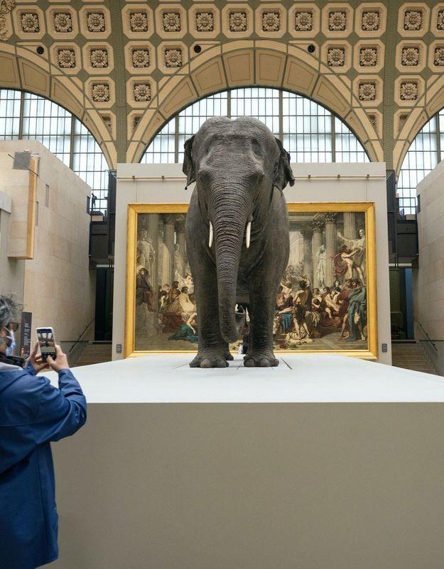 « Les origines du monde », nouveau regard sur la nature au Musée d'Orsay