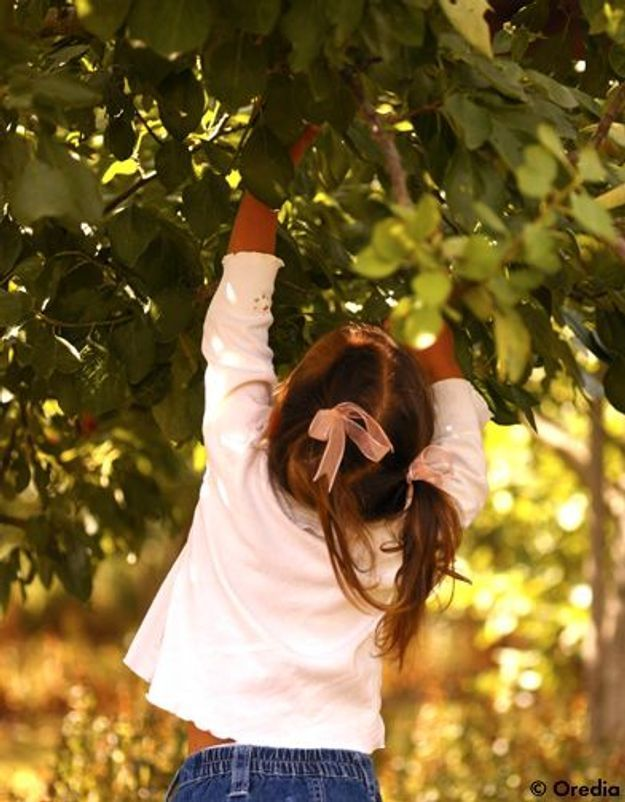 Education : les enfants manquent de contact avec la nature