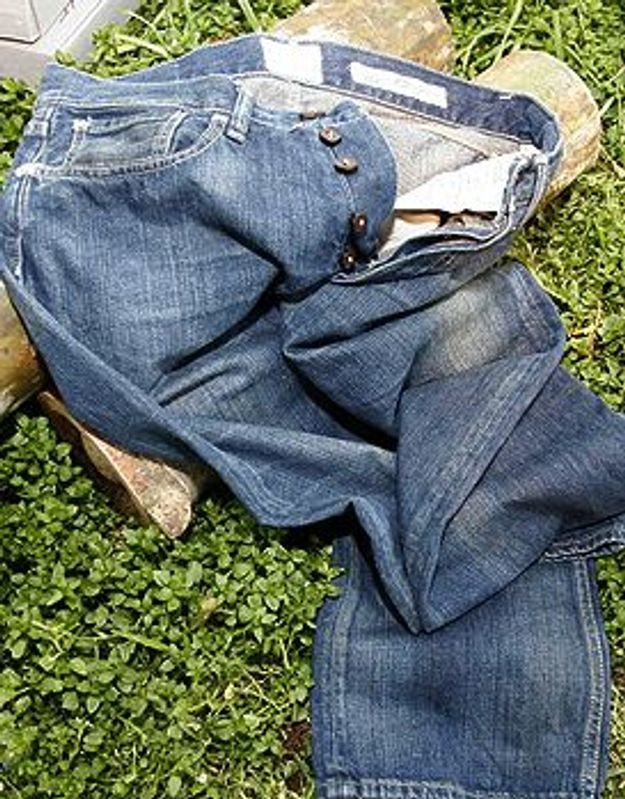 L'an vert du jean