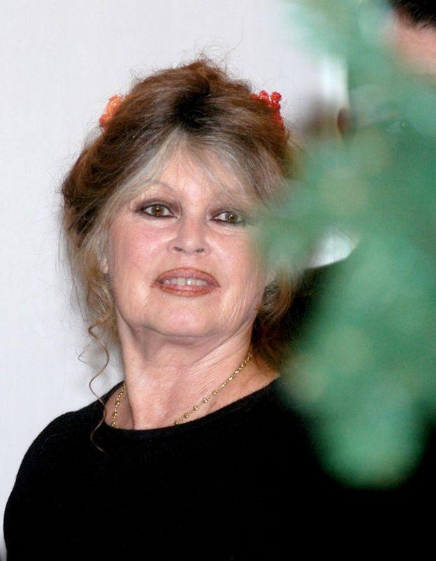 Brigitte Bardot « ne supporte plus la France »