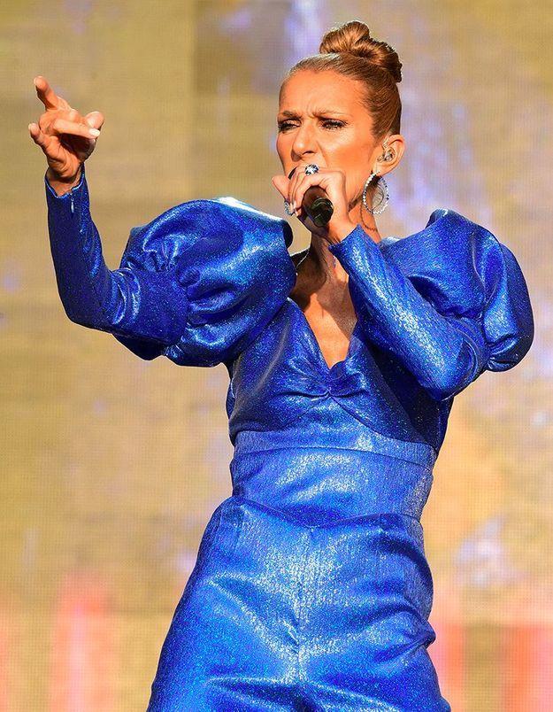Céline Dion : la famille royale aperçue à son concert !