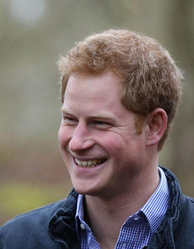Fini l'armée, le prince Harry veut changer de vie