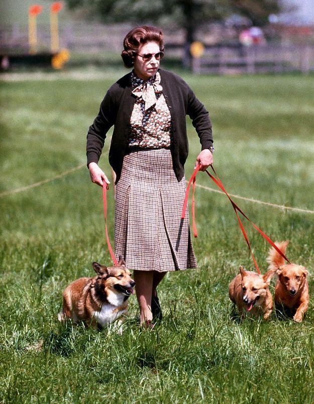 La belle vie des corgis d'Elizabeth II