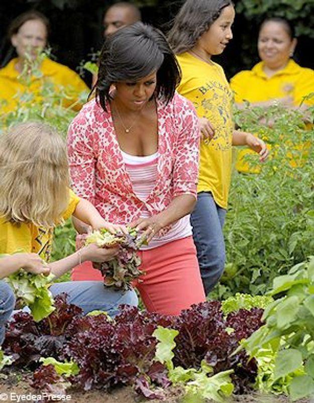 Le potager de Michelle Obama, pas bio du tout !