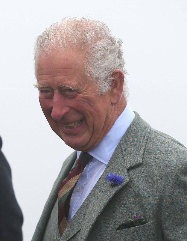 Le prince Charles publie un message d'alerte sur le réchauffement climatique