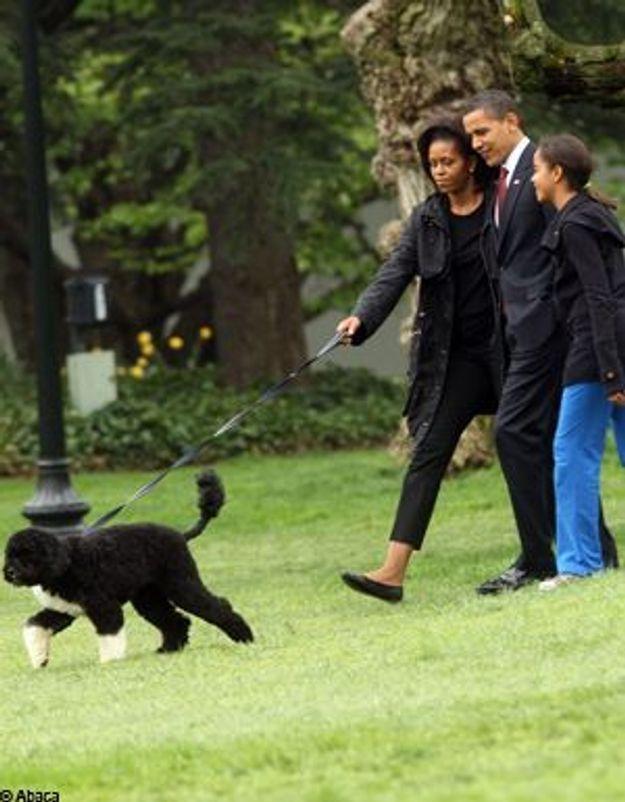 Obama : première promenade de Bo en famille !
