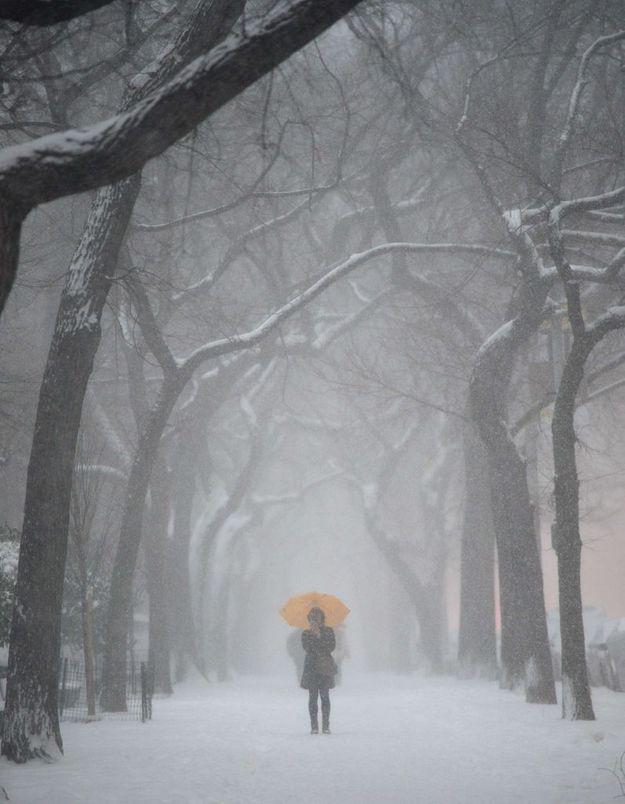 Seule sous la neige