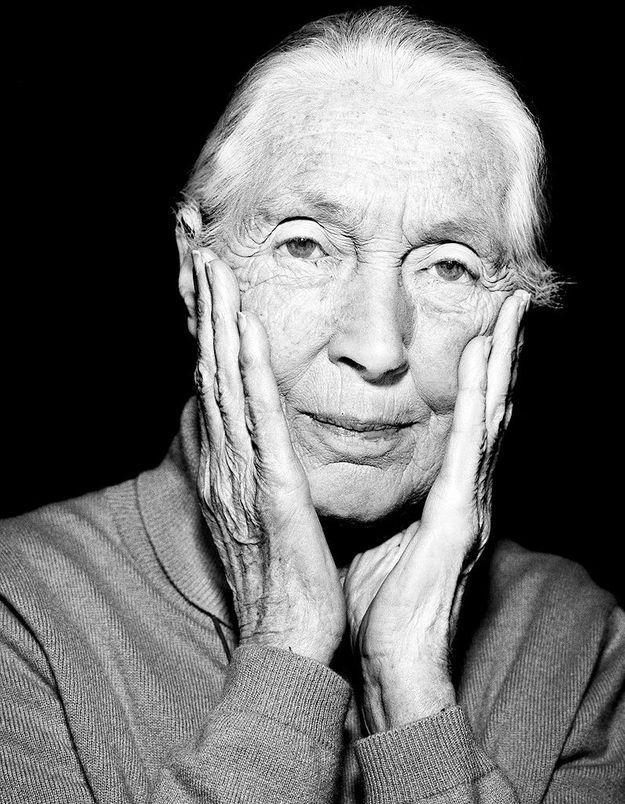 Jane Goodall : « Même les chimpanzés ont peur du ridicule ! »
