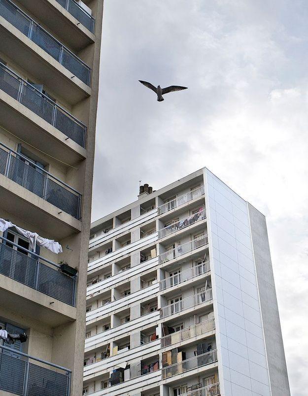 Quartiers nord de Marseille : la solitude des mères