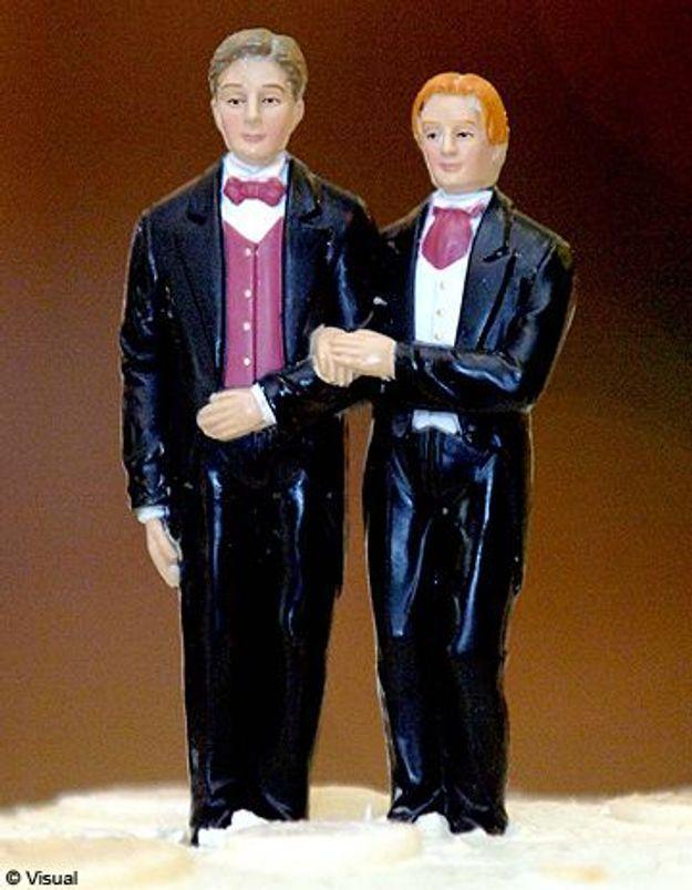 82 élus contre le mariage et l'adoption homosexuels