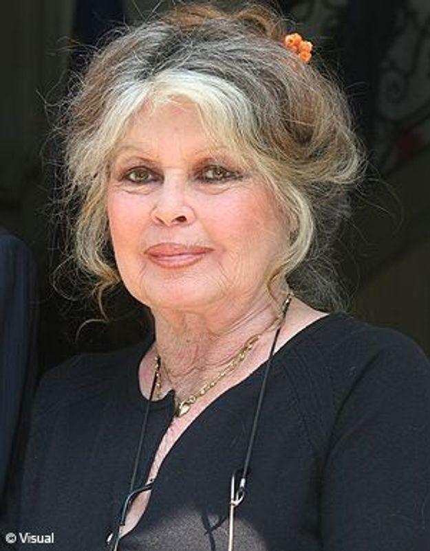 Brigitte Bardot se verrait-elle en ministre de l'Agriculture ?