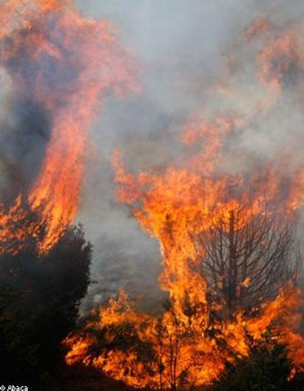 Deux jeunes hommes ivres incendient la Haute-Corse