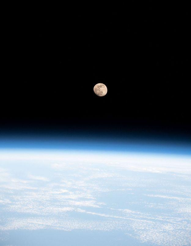 Hayley Arceneaux s'apprête à devenir la plus jeune Américaine envoyée dans l'espace