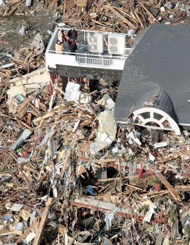 Japon : plus de 10 000 personnes pourraient avoir été tuées
