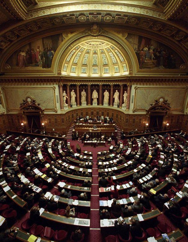 Mariage gay : la loi examinée aujourd'hui au Sénat