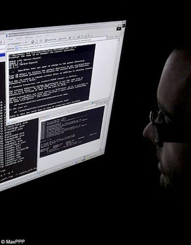 WikiLeaks : un ado Français soupçonné d'être un hacker